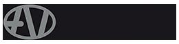 AVNGroup.eu Logo